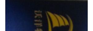 沃洋物流有限公司