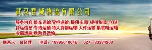 武汉顺嘉宜物流有限公司