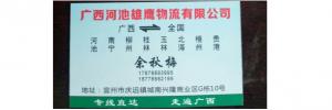 广西河池雄鹰物流有限公司