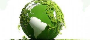双十一临近 绿色物流成主基调