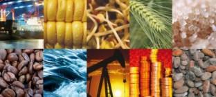 10月份中国大宗商品指数显示:供应压力有所加大,市场调整风险加剧